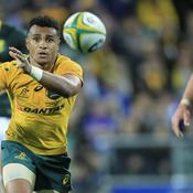 Rugby Championship : Australie-Argentine en direct