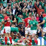 Test-match : l'Irlande s'offre le dossard N.1 avant de partir au Japon