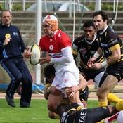 Pro D2 : Biarritz souffre, Perpignan souffle