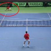Le lob magique de Djokovic en Coupe Davis