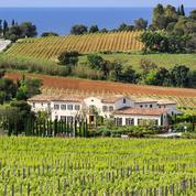 Voyez Rosé sur la Presqu'île de Saint-Tropez !