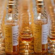 2017, l'année cognac