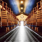 Bordeaux s'enflamme pour le millésime 2016