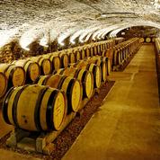 787 pièces de vin seront vendues lors de la 157e vente des Hospices de Beaune