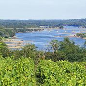 Quel est votre niveau de connaissance des vins de Loire ?