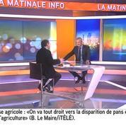 « Je n'ai jamais dit ça »: Bruno Le Maire répond à Rachida Dati au sujet de «super intelligence»