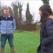 Le boeuf français va devenir un produit de luxe, selon un ancien éleveur
