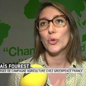 Zéro pesticide : Carrefour et U en tête, Leclerc bon dernier