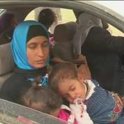Des milliers d'Irakiens fuient les combats entre l'armée et le groupe Etat islamique
