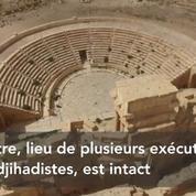Syrie : l'état des lieux de Palmyre filmé par un drone
