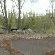 Pripiat, ville fantôme, 30 ans après la catastrophe de Tchernobyl