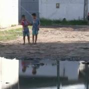 Zika : 150 experts estiment que les JO de Rio doivent être déplacés ou reportés