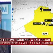 Irak : la longue bataille de l'armée pour libérer Falloujah de l'EI