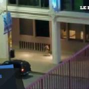 Une vidéo amateur montre un tireur de Dallas en action