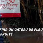Un gâteau de fleurs et de fruits pour les 50 ans de Mali, l'hippopotame du zoo de Bangkok