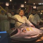 Japon: un thon rouge adjugé à plus de 600.000 euros