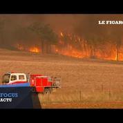 D'importants feux de brousse ravagent le sud de l'Australie