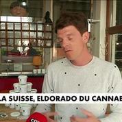 La Suisse, eldorado du cannabis légal