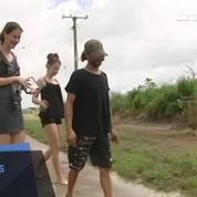 Les inondations en Australie laissent un requin sur la route