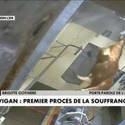 Vigan : premier procès de la violence animale