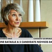 Législatives 2017 : Des élections atypiques dans l'Aude