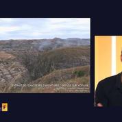 Les feux de brousse, une menace pour le massif du Makay
