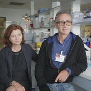 Thierry Lhermitte: «Après beaucoup d'échecs dans la recherche sur Alzheimer des voies s'ouvrent, notamment sur la thérapie génique»