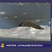 Le Svalbard, terrain d'expérimentation pour le tourisme durable