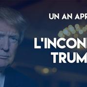 Un an après, l'inconnue Trump