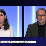 Point de vue du 28 novembre : ordonnances, Macron en Afrique, glyphosate, Solère