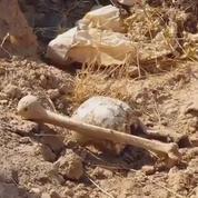 400 cadavres dans des charniers de Daech