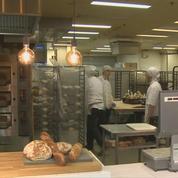 Finlande: un pain aux insectes commercialisé