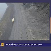 La Svalbard, royaume des ours polaires