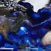 Harvey, Irma, Jose, Maria, Ophelia : l'évolution des grands ouragans de 2017