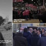 Suivez en vidéo l'inauguration du Salon de l'agriculture