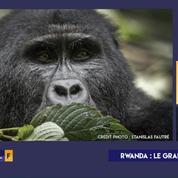 « Terminal F » : Rwanda, le grand retour