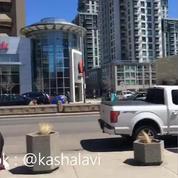 Canada: une camionnette renverse une dizaine de piétons