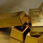 Roanne : un couple doit restituer les lingots d'or trouvés dans son jardin