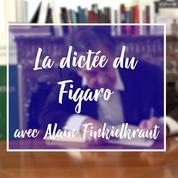Dictée du Figaro : Alain Finkielkraut déjoue les pièges de Flaubert
