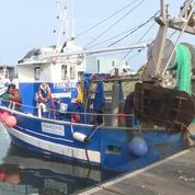 Une guerre de la coquille saint-Jacques oppose les pêcheurs français aux Anglais
