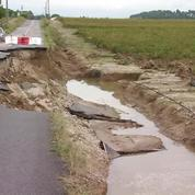 Inondations dans l'Aude : les vignes sous les eaux