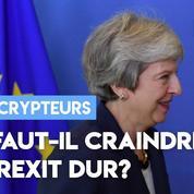 UE : faut-il craindre un Brexit dur?