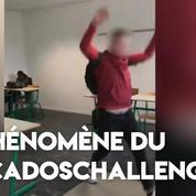 #sacadoschallenge : le nouveau défi qui buzz