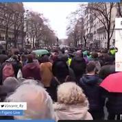 Malgré l'acte IV des «gilets jaunes», les marches pour le climat ont fortement mobilisé en France