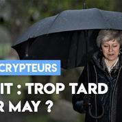Brexit : est-il déjà trop tard pour Theresa May ?