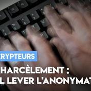 Cyberharcèlement : faut-il lever l'anonymat sur internet ?