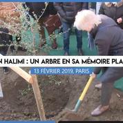 Un arbre planté à Paris en mémoire d'Ilan Halimi