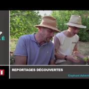 Zapping TV : la folie des supporters du PSG pour Neymar