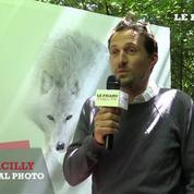 Vincent Munier : le fantôme de l'arctique exposé à La Gacilly 2015