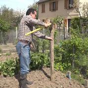 Pour réussir votre plantation de tomates, suivez les conseils de Marc !
